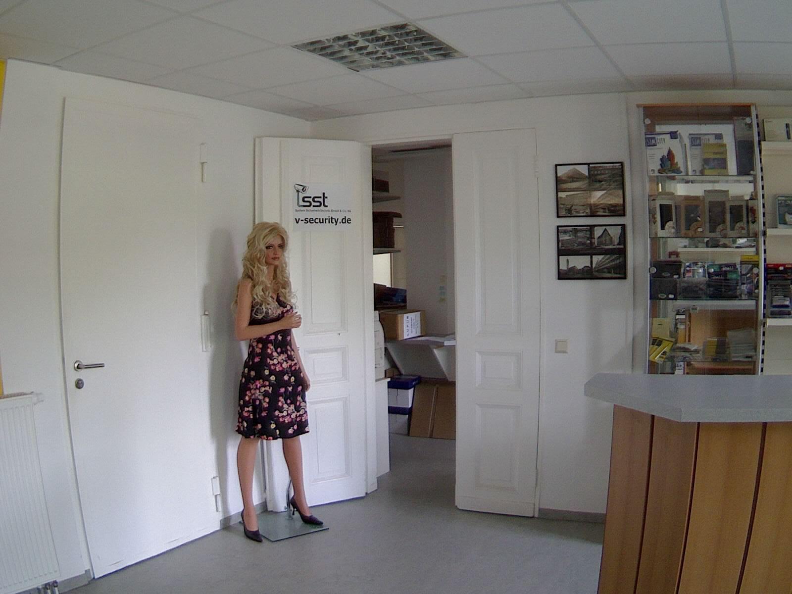 video berwachungssysteme berwachungskameras mit welcher aufl sungen. Black Bedroom Furniture Sets. Home Design Ideas